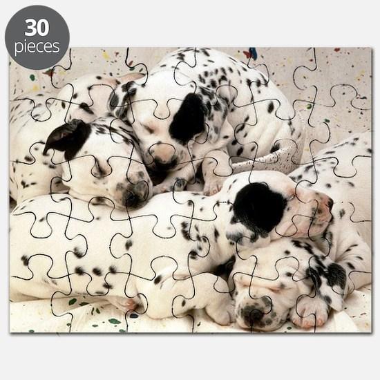 Dalmation sm fr pan print Puzzle