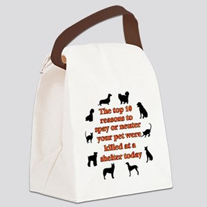 10 reasons to spay_white Canvas Lunch Bag
