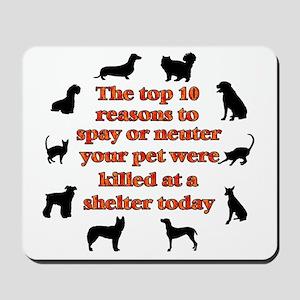 10 reasons to spay_white Mousepad