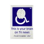 Brain on TV News Rectangle Magnet