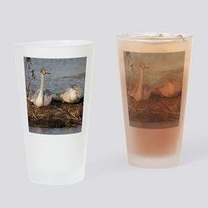 Trumpeter Swan MP Drinking Glass