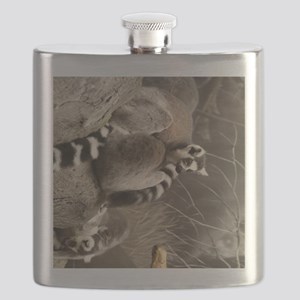 RingTailedLemur 16x20 Flask