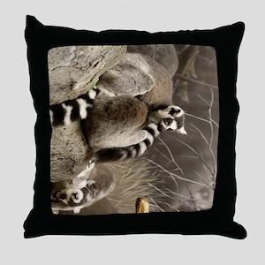 RingTailedLemur 16x20 Throw Pillow