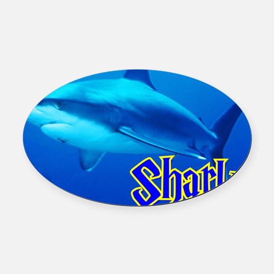 Sharks Wall Calendar Oval Car Magnet