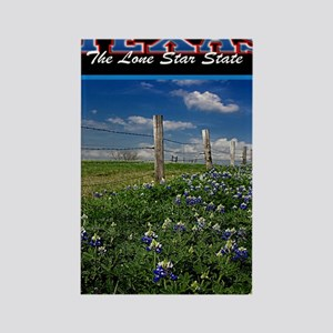 Postcard Texas Bluebonnets_0999_3 Rectangle Magnet