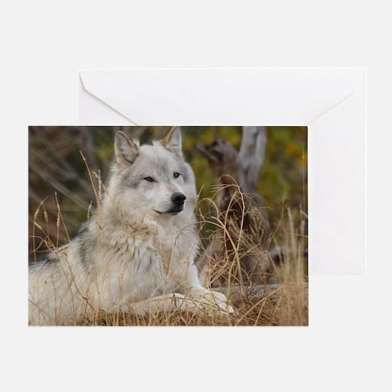 Wolf 10x14 Greeting Card