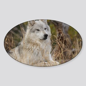 Wolf 10x14 Sticker (Oval)