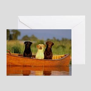 RAIN LABS pan print Greeting Card