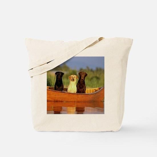 RAIN LABS pillow Tote Bag