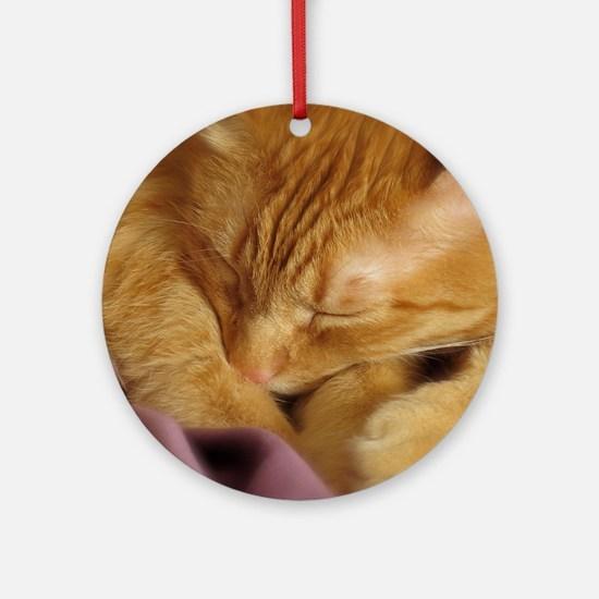 Tigers Aura Round Ornament
