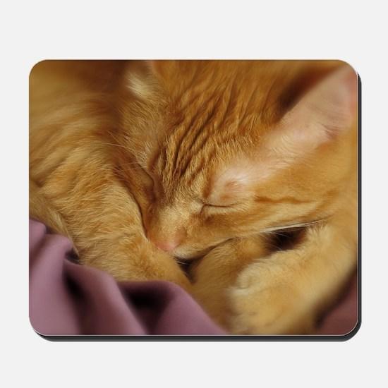 Tigers Aura Mousepad