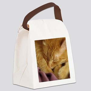 Tigers Aura Canvas Lunch Bag