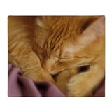 Orange tabby cat Fleece Blankets