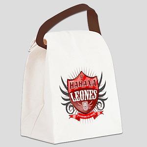 HabanaShield_Dark Canvas Lunch Bag