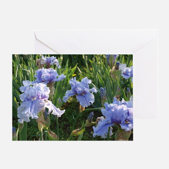 Delicate light blue irises Greeting Card
