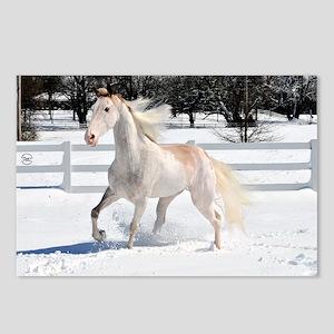 Horse_large_framed Postcards (Package of 8)