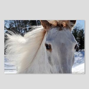 horse_eyes_lgframed Postcards (Package of 8)