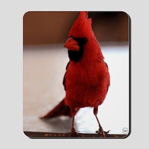 cardinal_card Mousepad