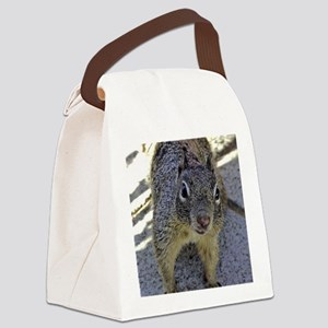 squirrel_panel Canvas Lunch Bag