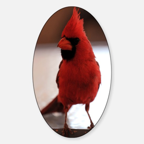 cardinal_journal Sticker (Oval)