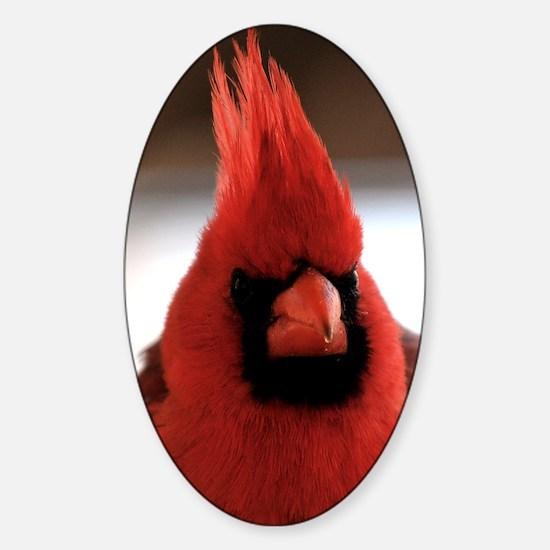 cardinal2_smposter Sticker (Oval)