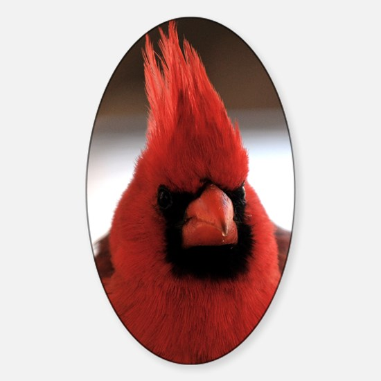 cardinal2_journal Sticker (Oval)