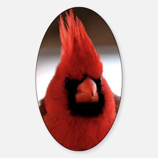 cardinal2_sticker Sticker (Oval)
