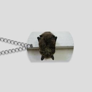 bat, chiroptera Dog Tags