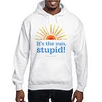 Global Warming Sun Hooded Sweatshirt