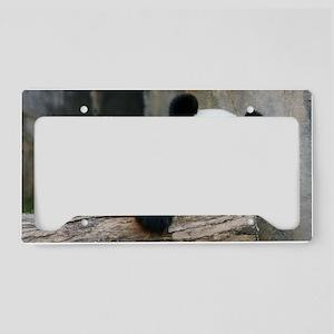 IMG_9015 License Plate Holder