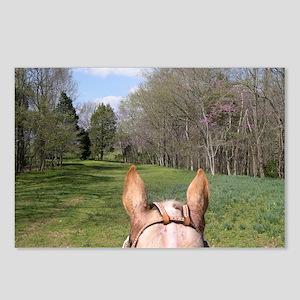 horse_ride_Lg_framed Postcards (Package of 8)
