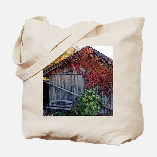 old_barn_mpad Tote Bag