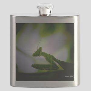 Preying mantis Flask