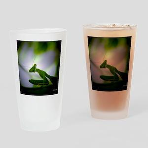 Preying mantis Drinking Glass