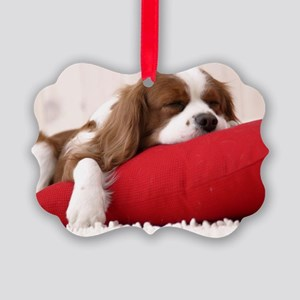 Spaniel greeting Picture Ornament