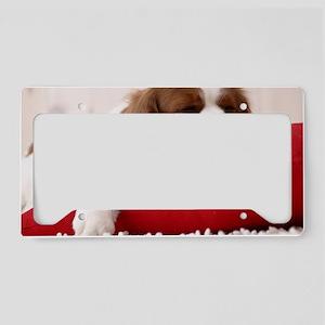 Spaniel mousepad License Plate Holder