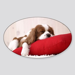 Spaniel puppy Sticker (Oval)