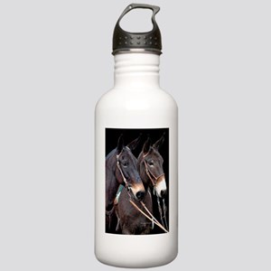 twosome_lg_poster Stainless Water Bottle 1.0L
