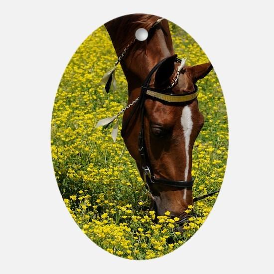 walker_flowers_card Oval Ornament