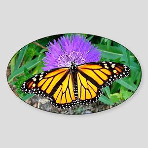 Monarch Butterfly, Calendar Page, Y Sticker (Oval)