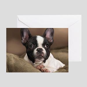 F pup panel print Greeting Card