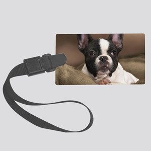 F pup panel print Large Luggage Tag