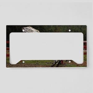 knn_2 License Plate Holder