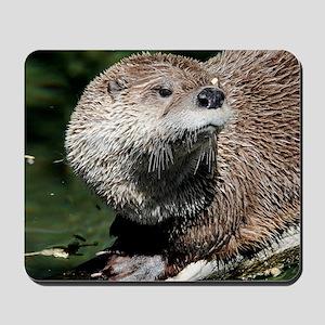 otter1_rnd Mousepad