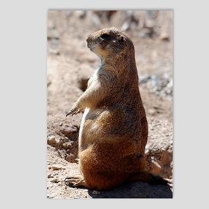 prairie_dog_sticker Postcards (Package of 8)