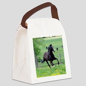 spring_walker_panel Canvas Lunch Bag