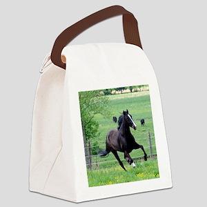 spring_walker_calendar Canvas Lunch Bag