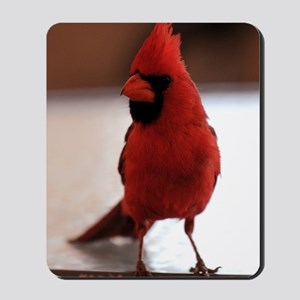 cardinal_lg_framed Mousepad