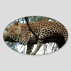Leo Tree panel print Sticker (Oval)