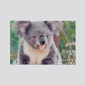 Koala Smile L print Rectangle Magnet